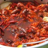 crawfishboil2